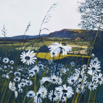 Libby Edmondson - White Daisy