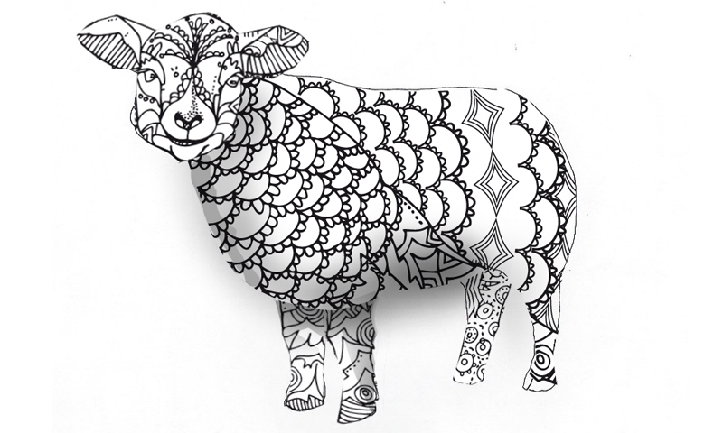 herdwick outline pencil museum