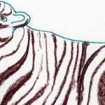 Jenni Payne - Zebra