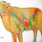 Christine Hurford - Contour Sheeptracks