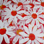 red and white daisies