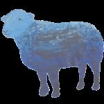 bluelake herdwick