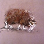 Herdwick small