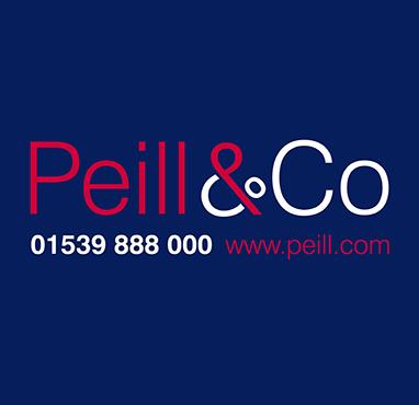 Peill382