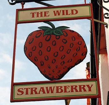Wild-strawberry382