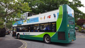 Stagecoach-Branded-Bus-web